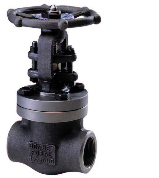 BF Catalog - Forged Steel Valves